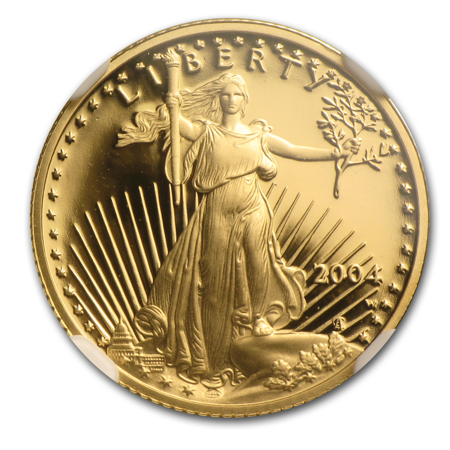 2004-W 1/10 oz Proof Gold American Eagle PF-70 NGC